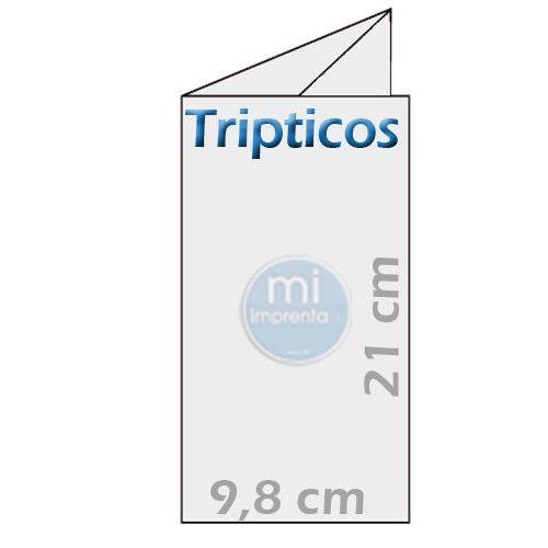 imprenta-tripticos-10x21cm